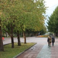 Убийство произошло в ночь на 7 февраля в Нарымском сквере