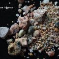 Коллекцию песка создала учительница географии Нина Колесникова