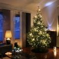 Втридорога: как сдать квартиру на новогодние праздники