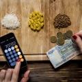 Два новосибирца поучаствовали в добровольном эксперименте и попытались прожить на минимальную зарплату месяц