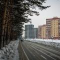 Ключ-Камышенское плато — самая высокая точка Новосибирска, а дорога к ней идёт вдоль плотной стены соснового бора