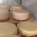 Итальянский сыр готовит Павел Стабров
