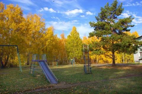 Детская площадка. Фото: russkij-les.ru
