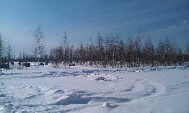 Зима. Фото:  tonkosti.ru