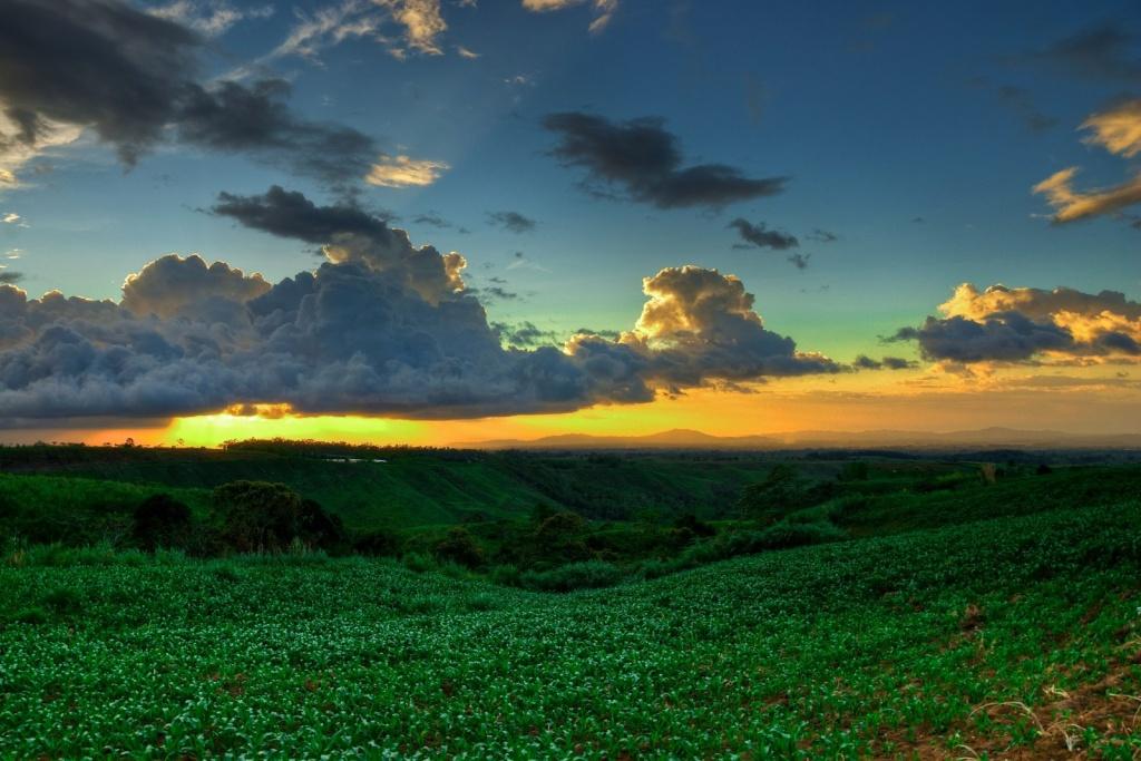 Автор: jojo nicdao. Фото:  www.flickr.com