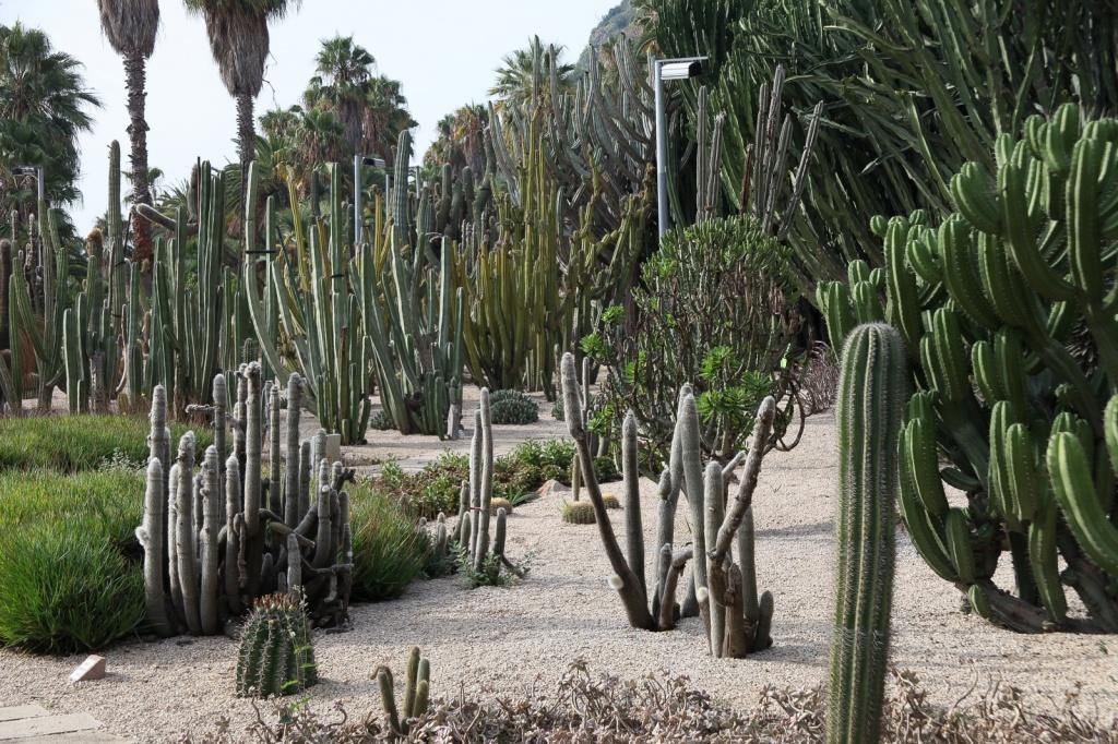Jardins de Costa i Llobera. Автор: Rick Ligthelm. Фото:  www.flickr.com