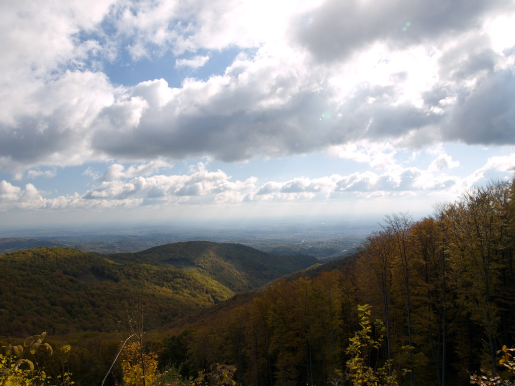 Автор: fran.pregernik. Фото:  www.flickr.com