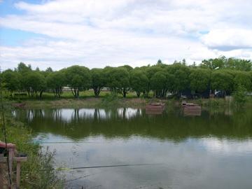 Озеро. Фото: www.omskinform.ru