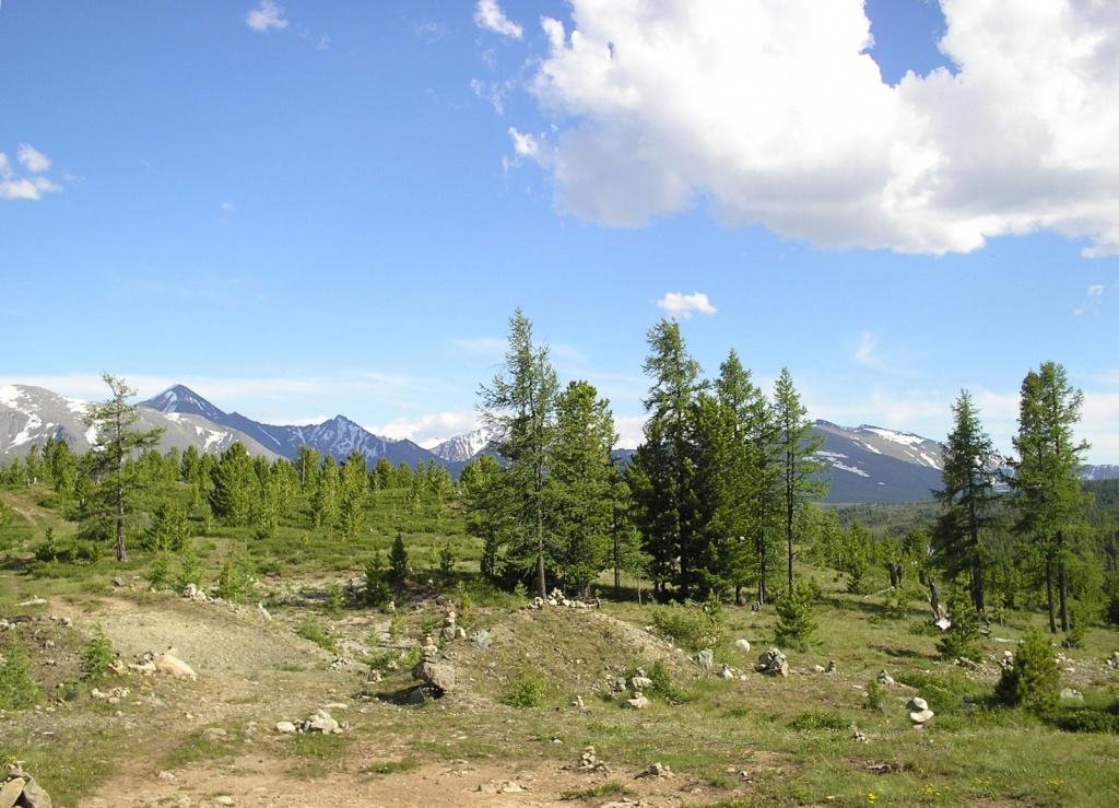 Улаганский перевал. Автор: Obakeneko. Фото:  www.flickr.com