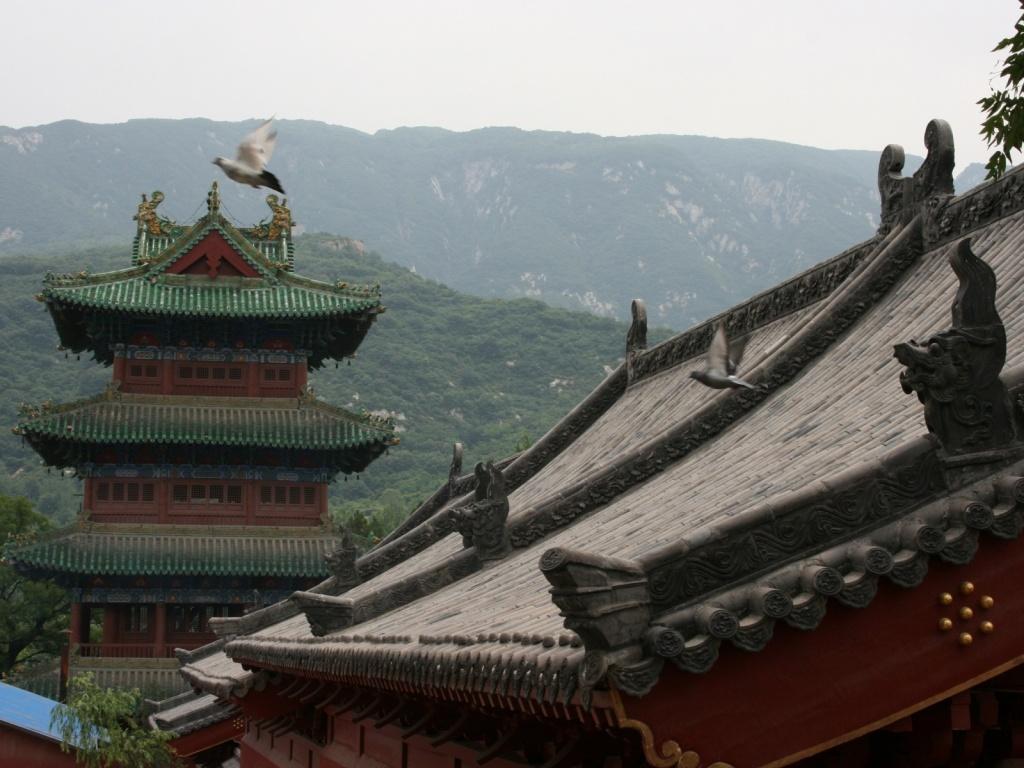 Автор: apophene. Фото:  www.flickr.com