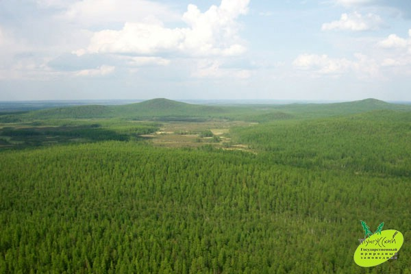 Фото:  tunzap.ru