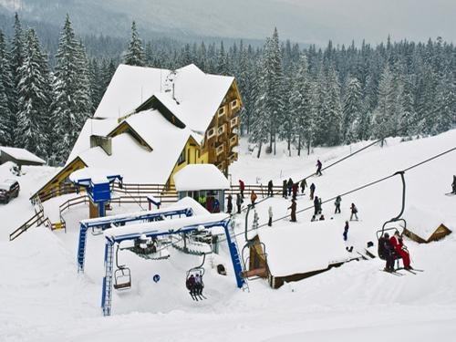 Фото: dragobrat-albatros.com.ua