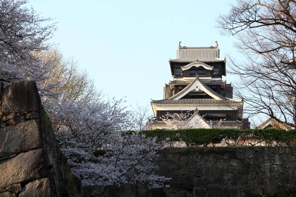 Автор: TANAKA Juuyoh (田中十洋). Фото:  www.flickr.com