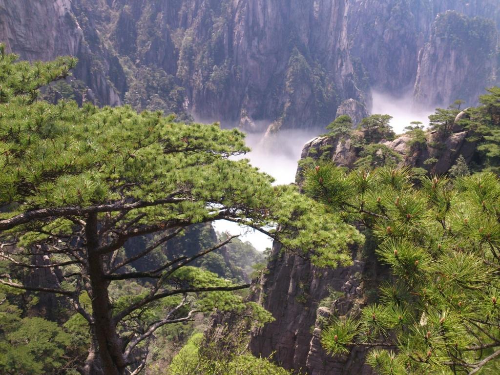 Автор: IOE Confucius Institute. Фото:  www.flickr.com