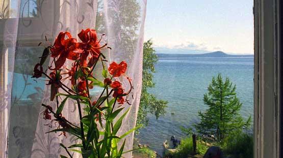"""База отдыха """"ПетровиЧ""""   - вид из окна"""