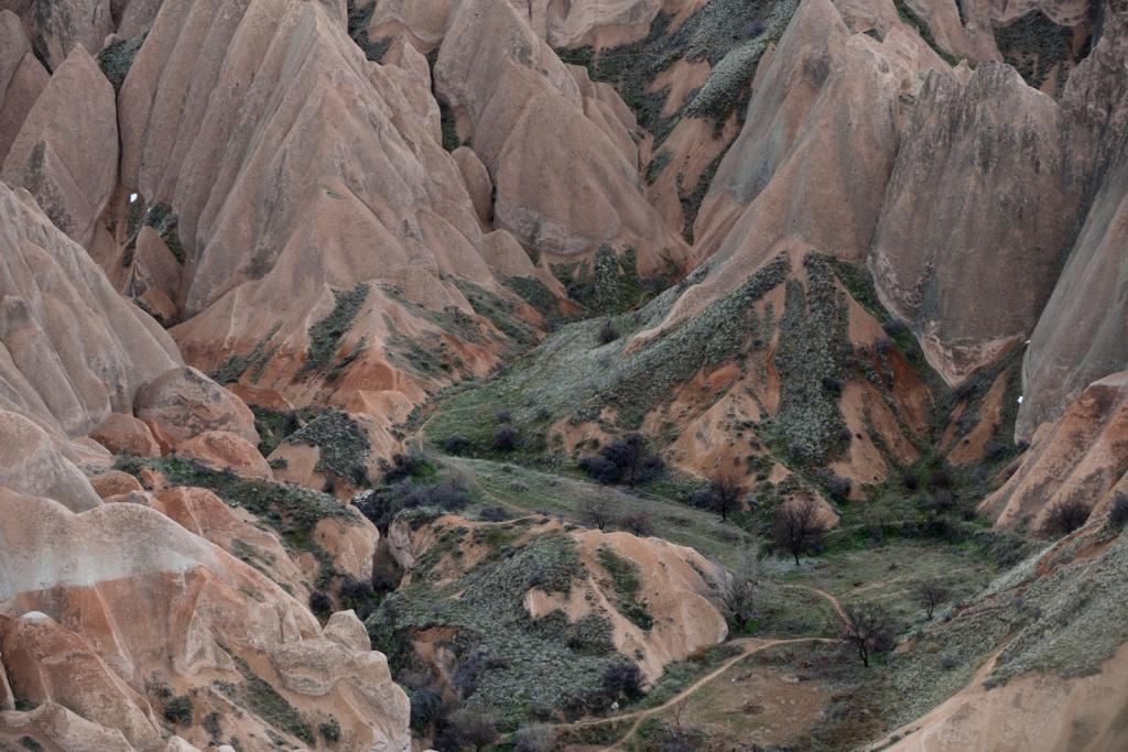 Автор: tsaiid. Фото:  www.flickr.com