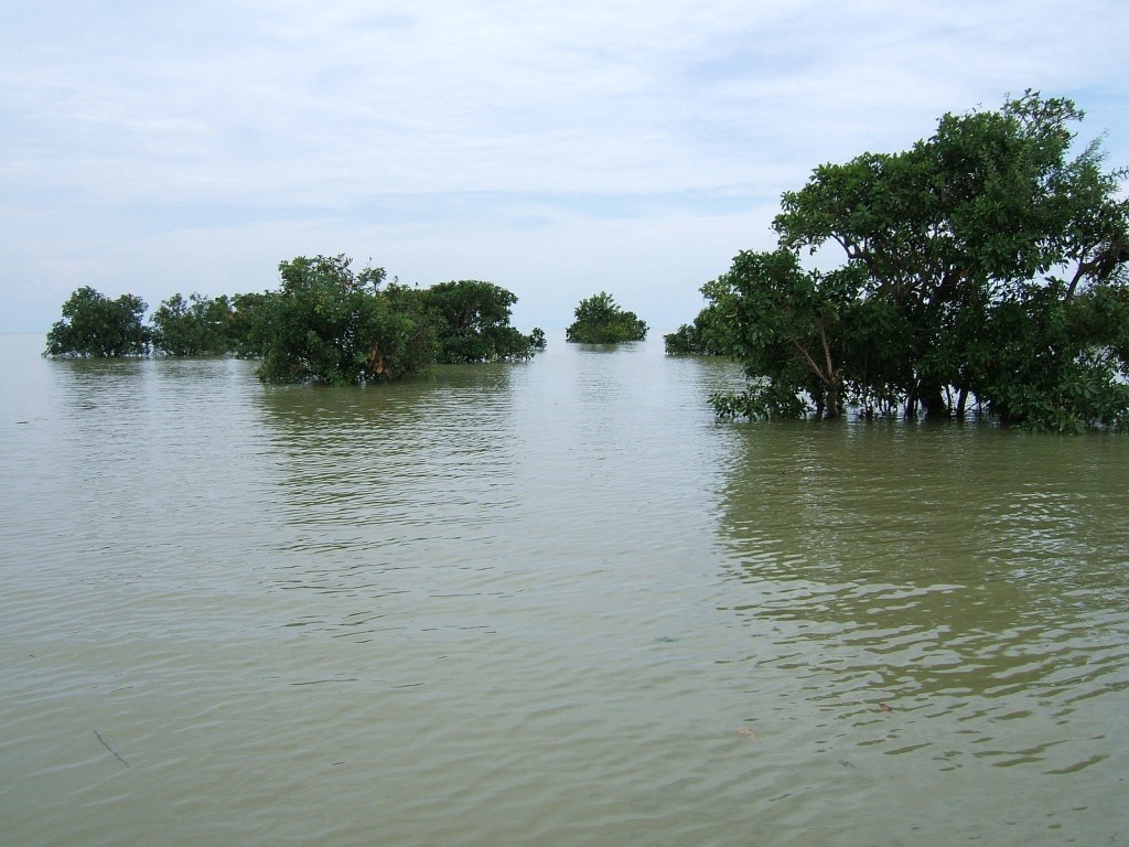 Озеро Тонлесап. Автор: oldandsolo. Фото:  www.flickr.com