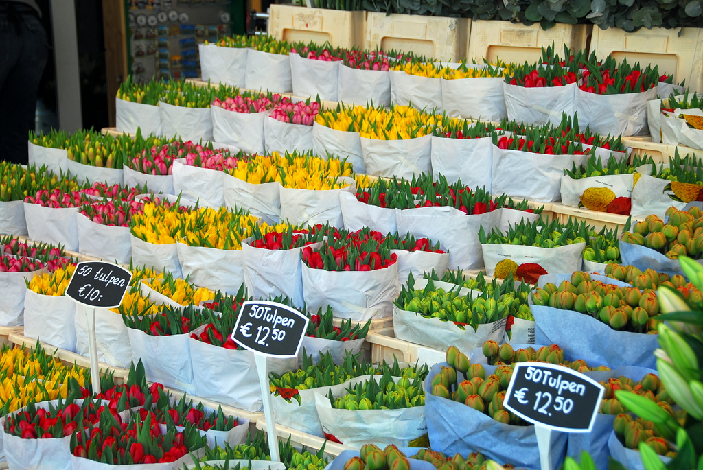 На цветочном рынке. Фото с сайта  tonkosti.ru