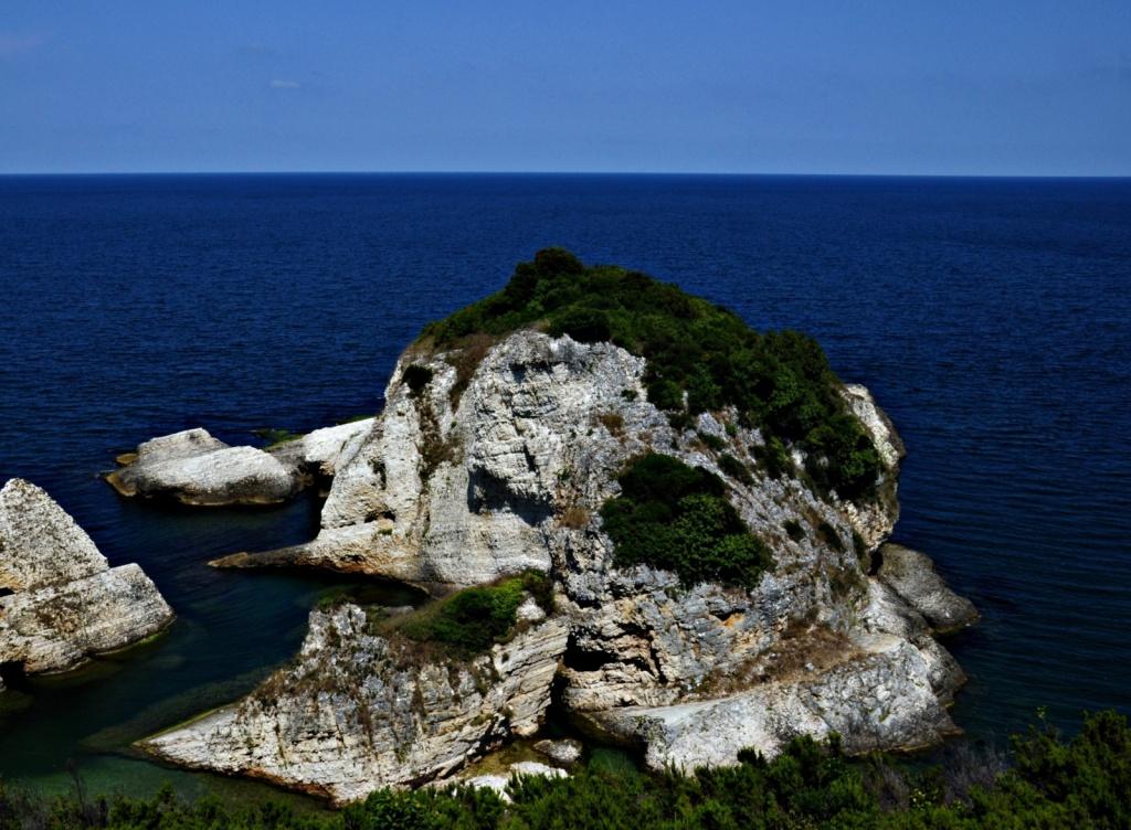 Автор: -Reji. Фото:  www.flickr.com