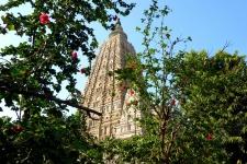 Храм Махабодхи (Mahabodhi Temple)