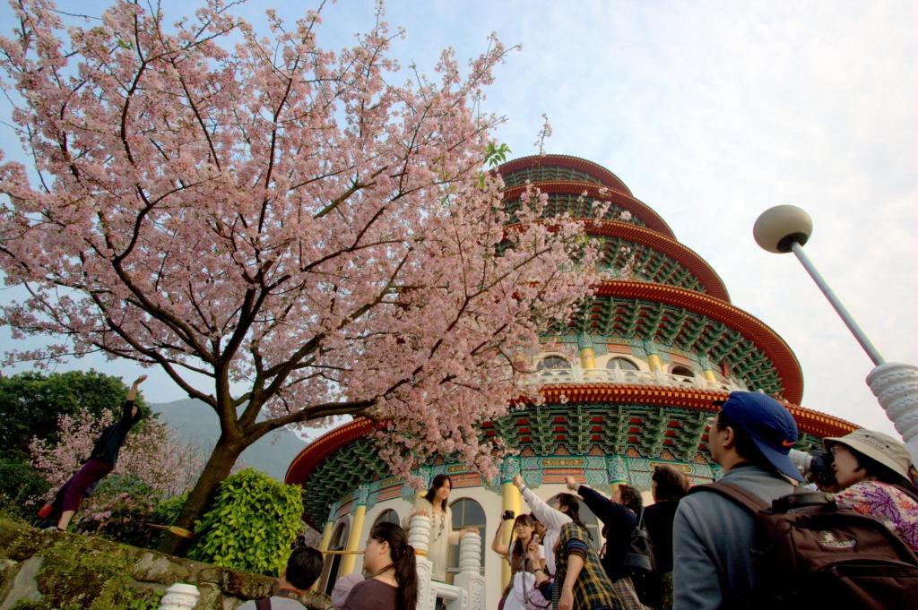Автор: Wunka. Фото:  www.flickr.com