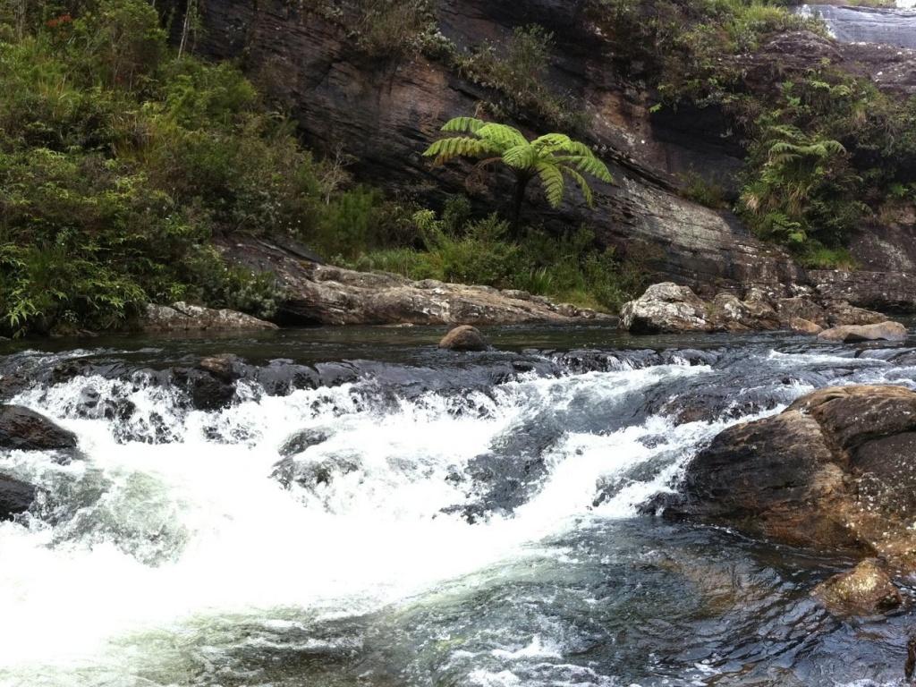 Водопад Бейкер. Автор: Augapfel. Фото:  www.flickr.com