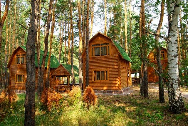 Летние бревенчатые домики. Фото: www.kurort-borovoe.kz
