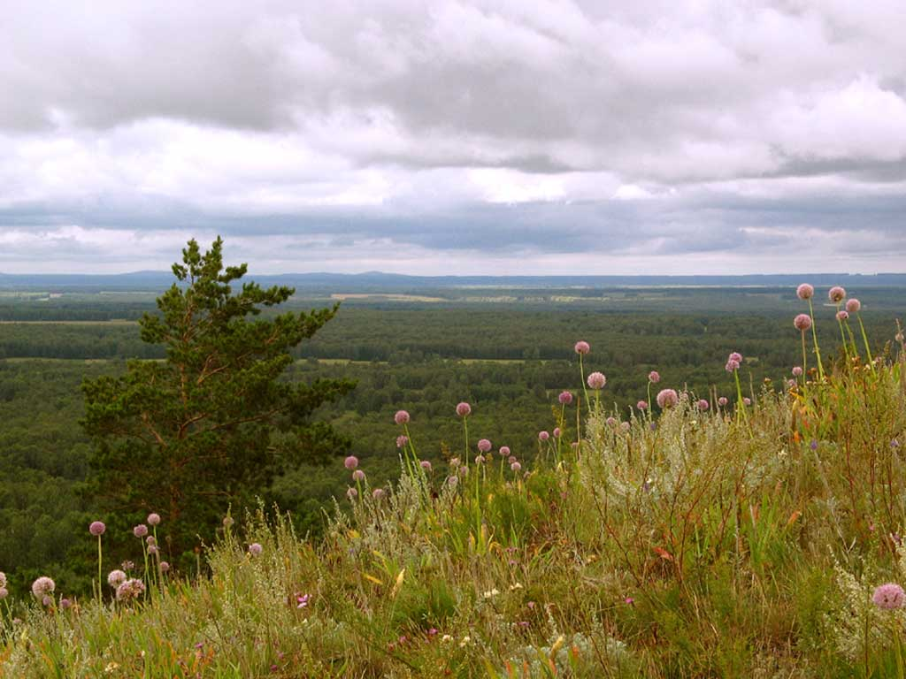 Вершина горы Улантова. Автор фото: Балацкий Н. Н.    www.balatsky.ru