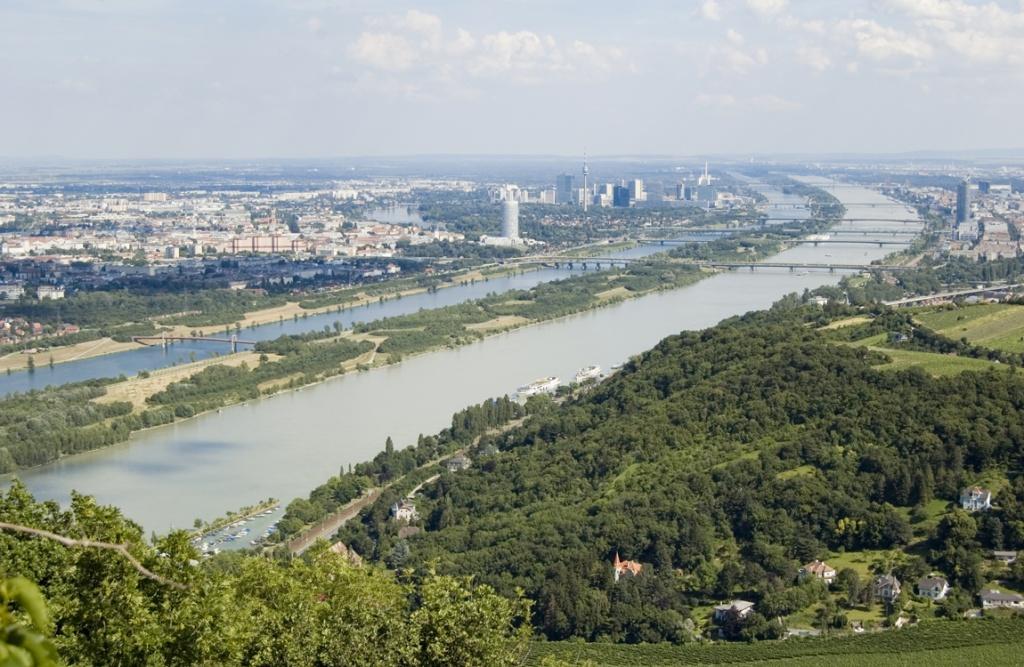 Панорама на Вену. Фото:  tonkosti.ru