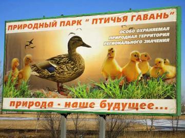 Фото:  greenpressa.ru