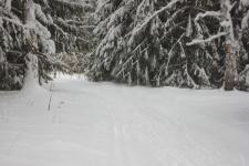 Лыжная база Тульского