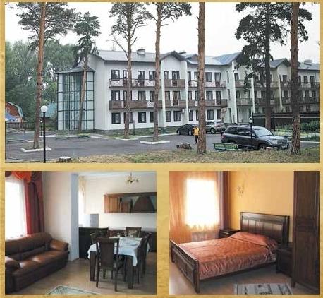 Гостиничный комплекс, кухня в коттедже, интерьер номера