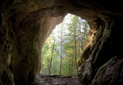 Пещера Каминная