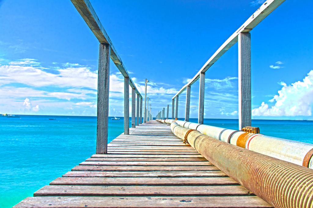 Барбадос.  Автор: Photography by Neil e Gibbs. Фото:  www.flickr.com