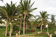 На острове Хайнань
