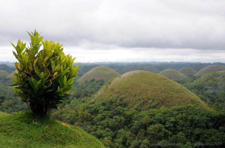 Шоколадные холмы. Фото с сайта pilipino.ru