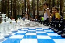 English&Chess