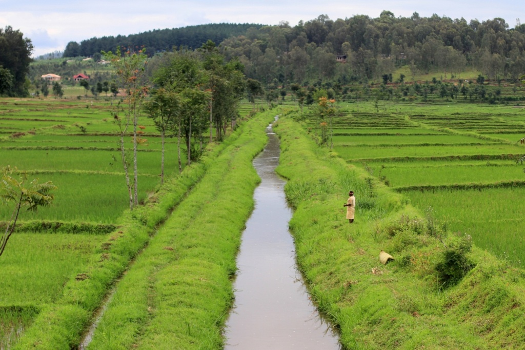 types of land use in rwanda