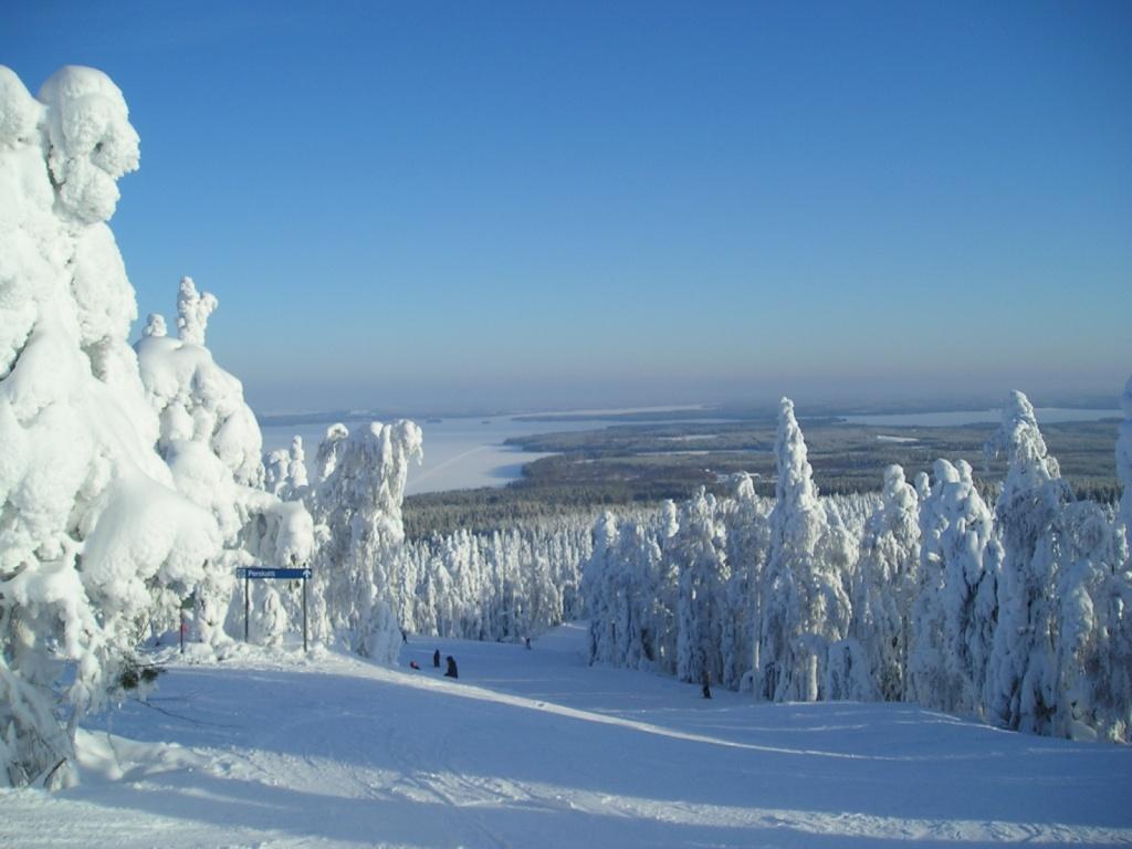 """Склон лыжного центра """"Вуокатти"""". Фото:  kallerna"""