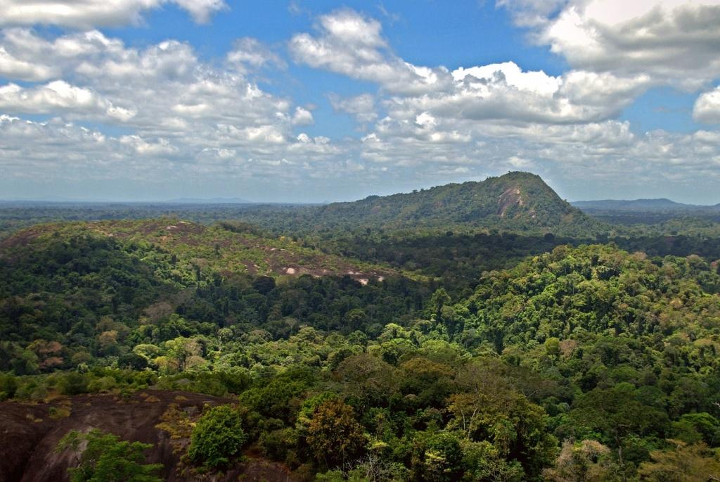 Суринам. Автор: Daveness_98. Фото:  www.flickr.com