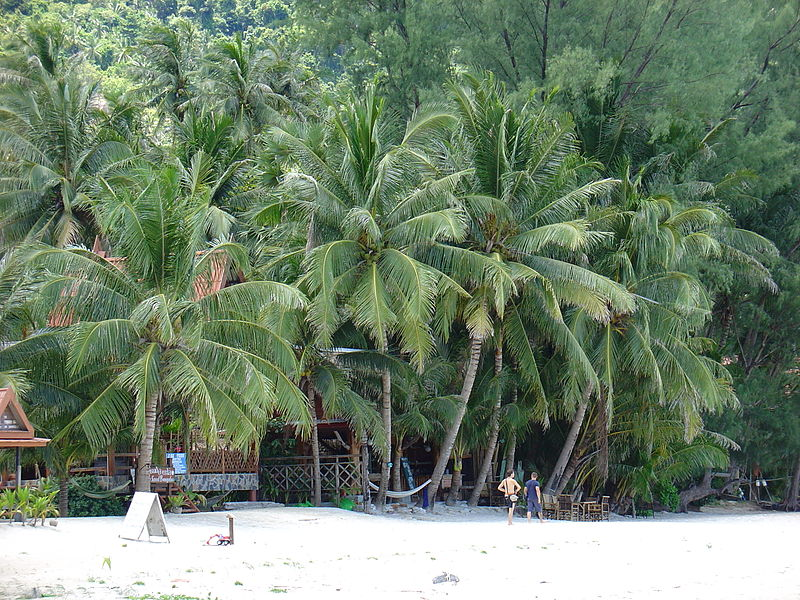 Пляж Тонг Най Пан Яй. Фото: AndreevAV, wikipedia.org