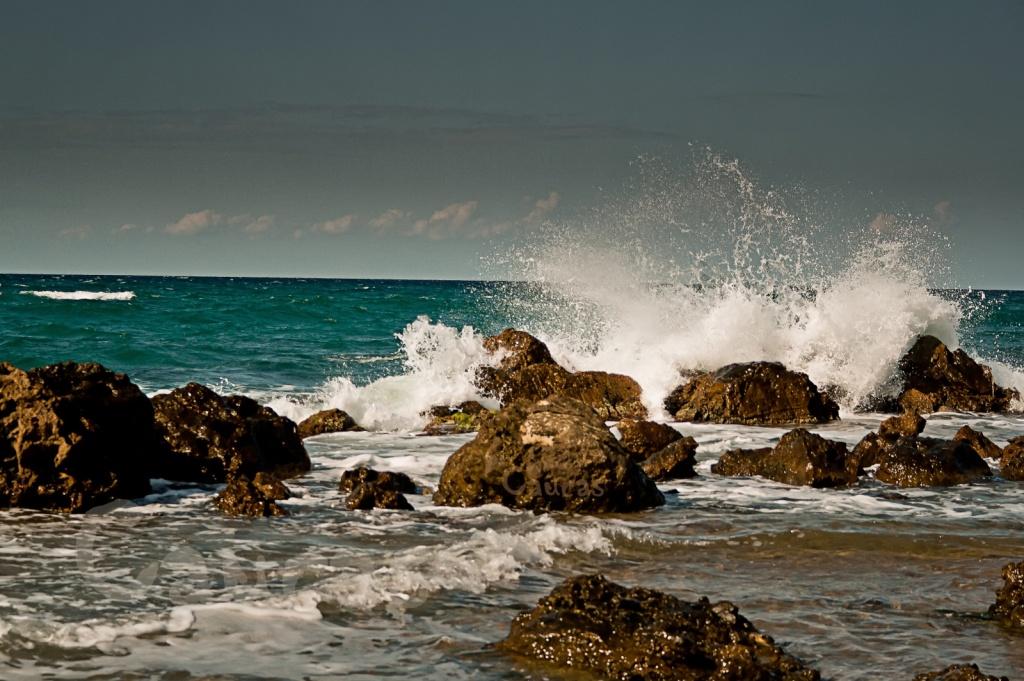 Автор: M.G. Kafkas. Фото:  www.flickr.com