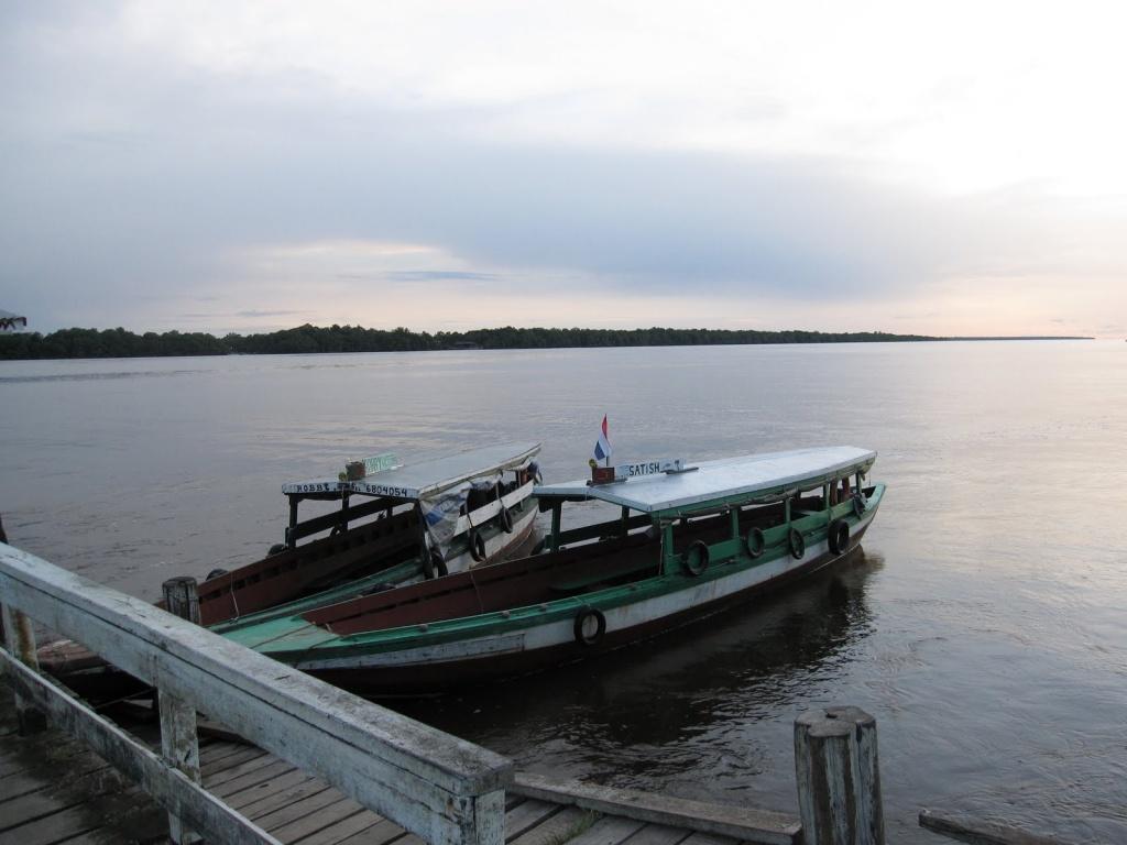 Суринам. Автор: rapidtravelchai. Фото:  www.flickr.com