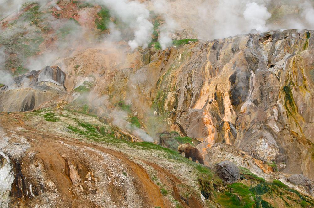 Долина гейзеров до оползня. Фото: Шпиленок И., www.kronoki.ru