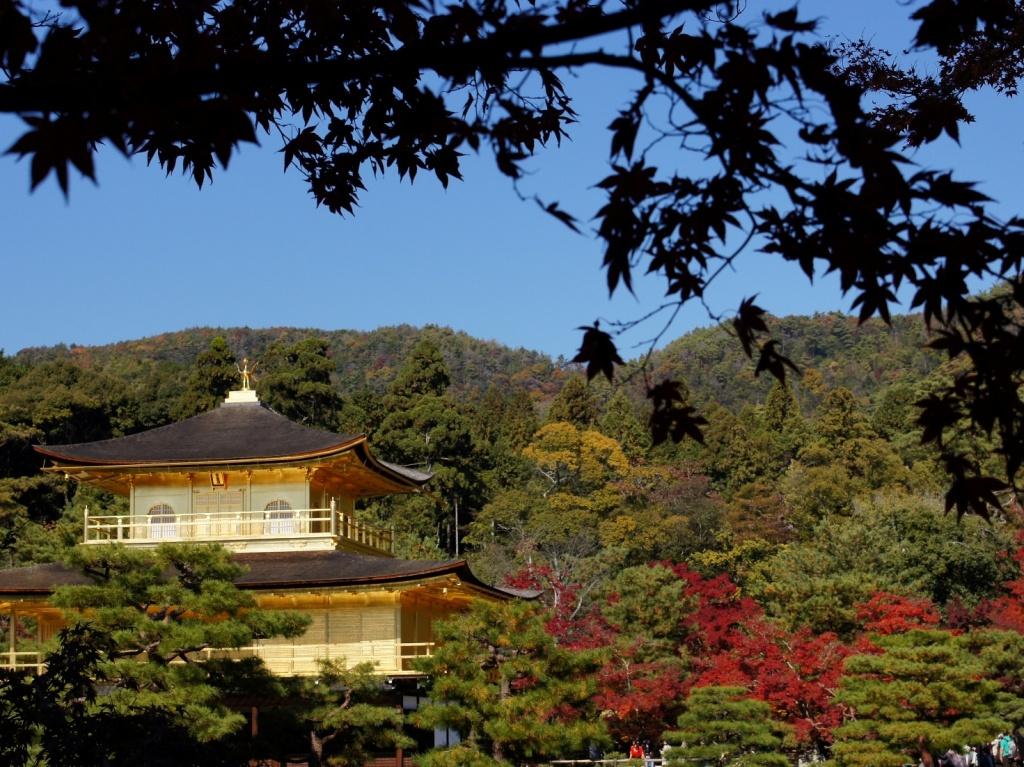 Автор: Kaba. Фото:  www.flickr.com