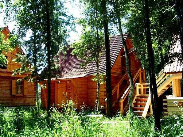 Фото: vk.com/podlemorie_baikal