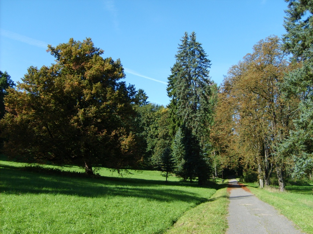 Английский парк возле замка. Автор: Ондржей Konicek. Фото:  commons.wikimedia.org