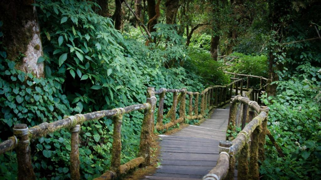 Автор: Qsimple. Фото:  www.flickr.com