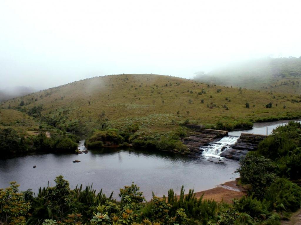 Автор: Gerald Pereira. Фото:  www.flickr.com