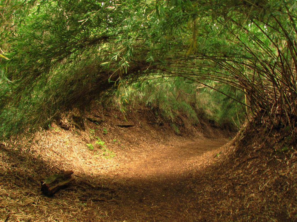 Автор: Adry Фото:  www.flickr.com